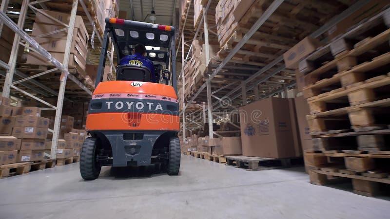 Logistiekzaken en verschepende faciliteit met handarbeiders werkende vorkheftruck om dozen en goederen, mens te bewegen die binne royalty-vrije stock foto's