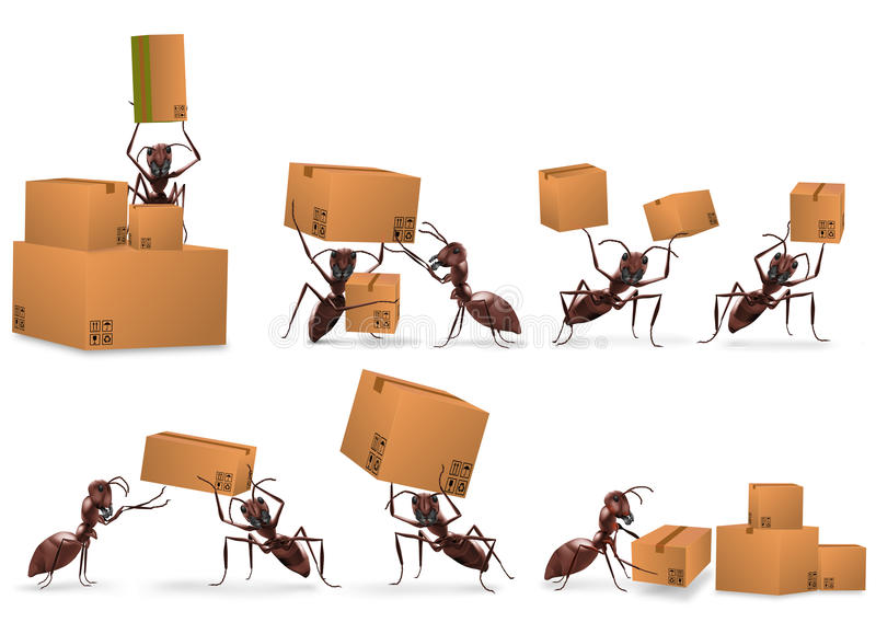Logistique vente par correspondance de la distribution de module illustration stock