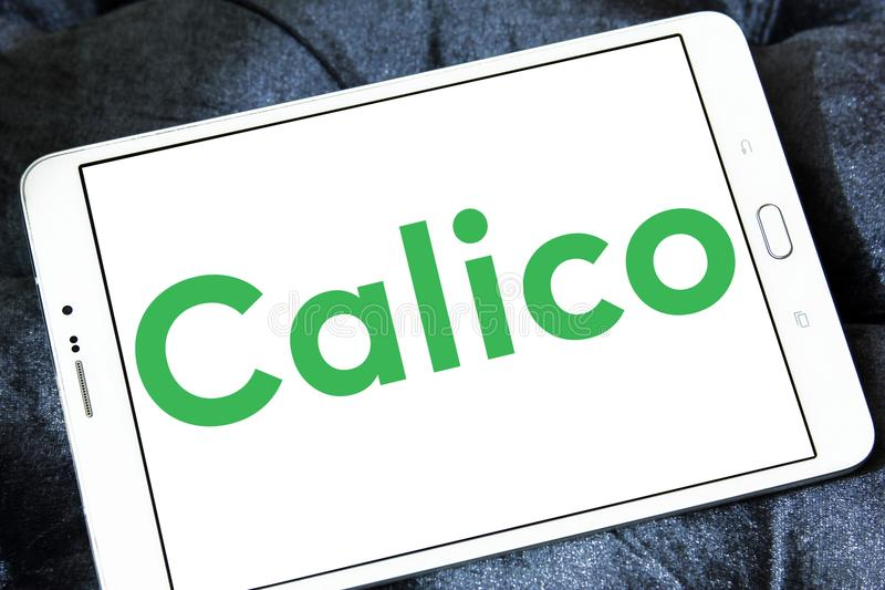 Calico biotech company logo. Logo of Calico company on samsung tablet. Calico is a research and development biotech company backed by Google with the goal of royalty free stock image