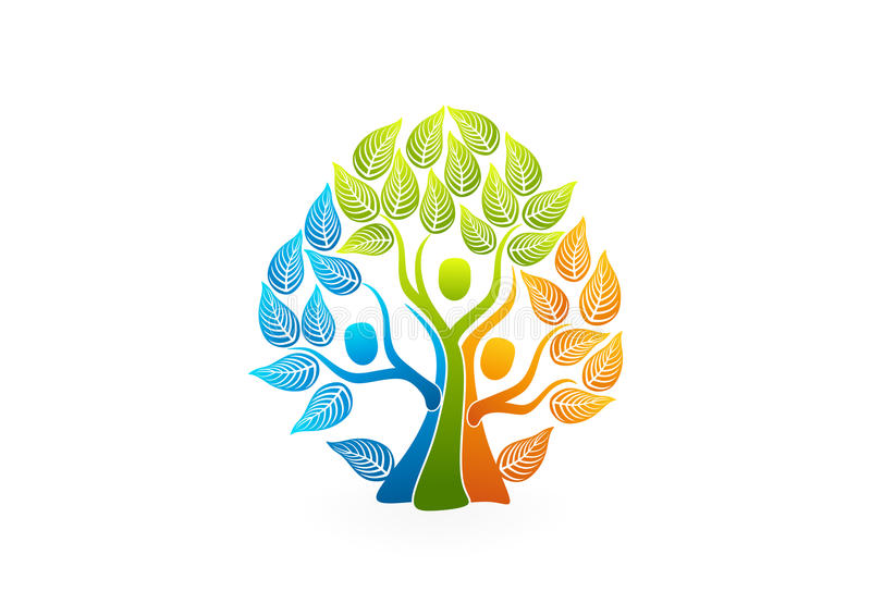 Logo d'arbre généalogique, conception de l'avant-projet saine de personnes illustration de vecteur