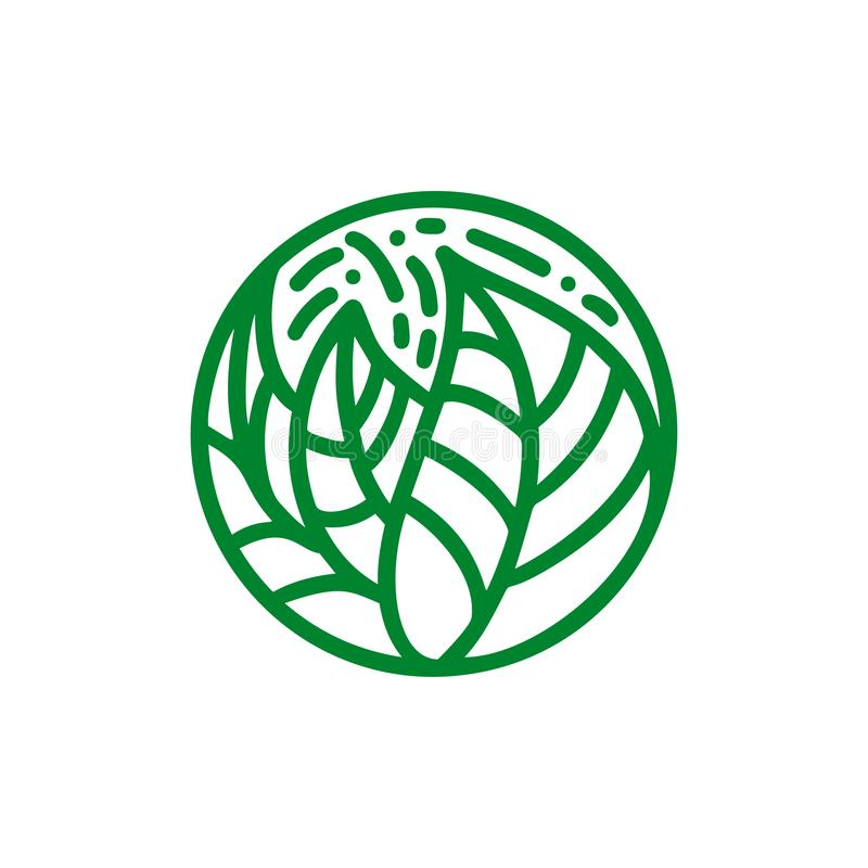 Logo de feuilles de vert de plante tropicale Bio emblème rond dans un style linéaire de cercle Insigne d'abrégé sur vecteur pour  illustration stock