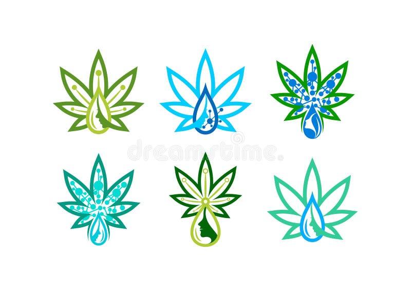 Logo de soins de la peau marijuana d'infusion, symbole liquide d'herbe, canabis icône, remède de beauté, et conception de l'avant illustration libre de droits