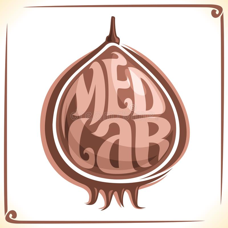 Logo de vecteur pour le fruit de nèfle illustration stock
