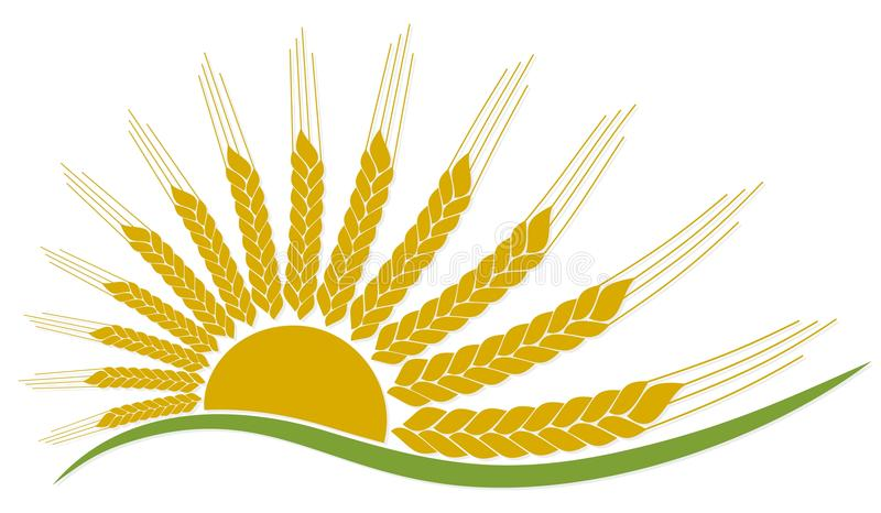 Logo del sole con grano illustrazione vettoriale