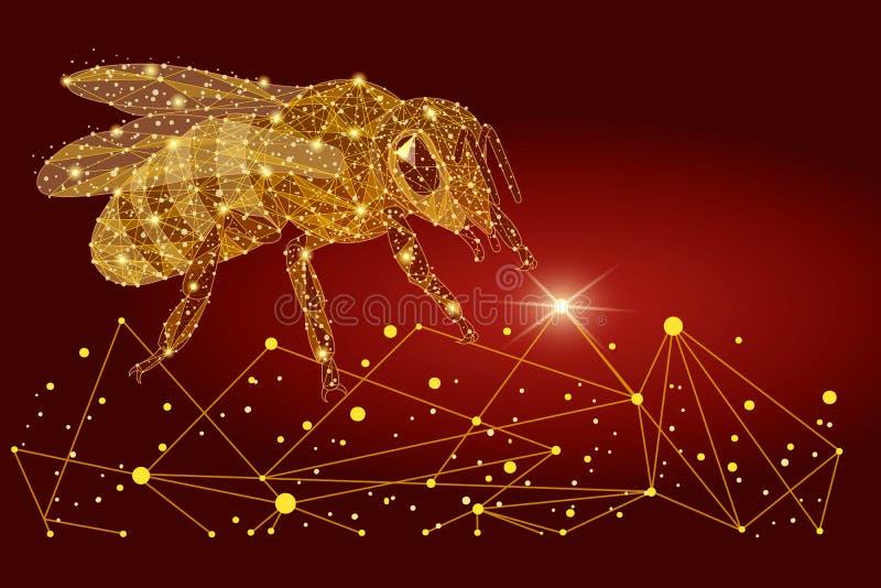 Logo dell'ape, apicoltura Progettazione poligonale astratta sotto forma di sabbia e di linee dorate Poli wireframe basso immagine stock libera da diritti