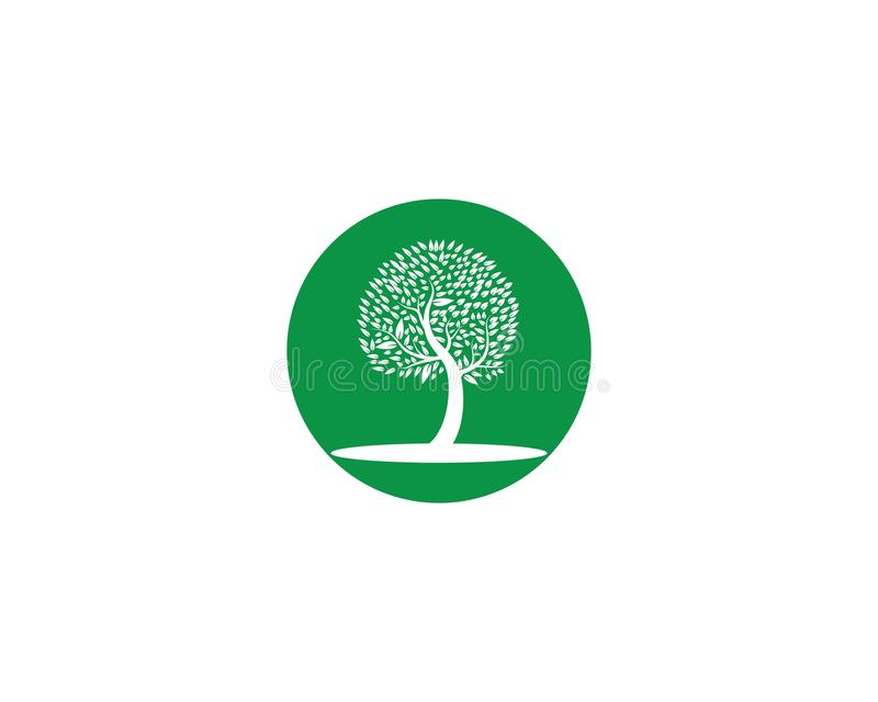 Logo dell'icona dell'albero illustrazione vettoriale