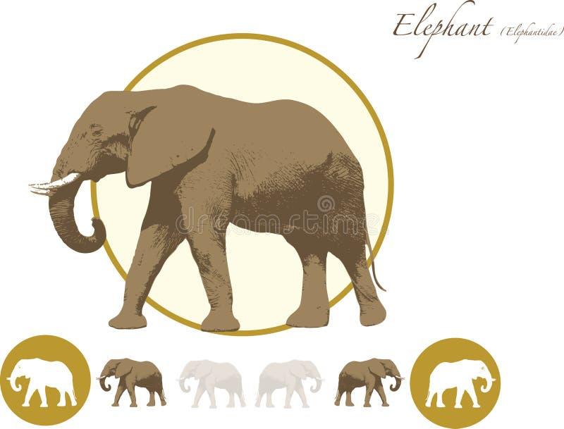 Logo dell 39 illustrazione dell 39 elefante illustrazione - Elefante foglio di colore dell elefante ...