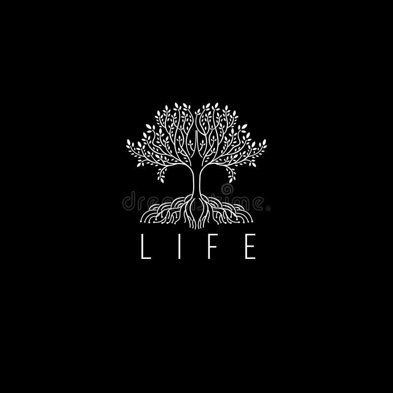 Logo di vettore dell'albero Icona dell'albero Monogramma di lusso dell'albero per il boutique illustrazione vettoriale