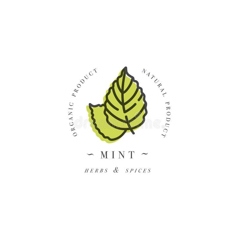Logo et emblème de calibre de conception d'emballage - herbe et épice - feuille en bon état Logo dans le style linéaire à la mode illustration libre de droits