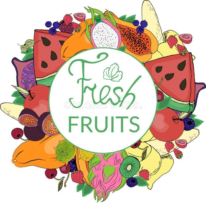 Logo et fruit coloré et lumineux illustration stock