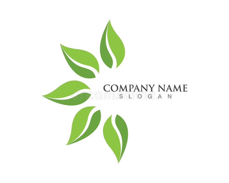 logo et symbole verts de nature de feuilles illustration stock