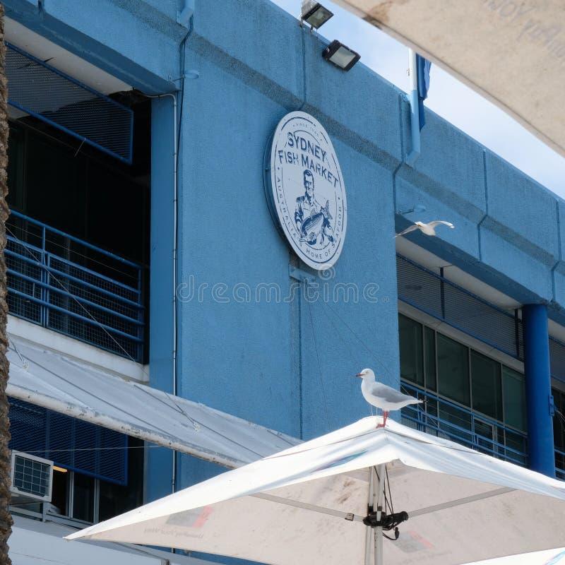Logo för Sidney fiskmarknad på den blåa väggen arkivfoton