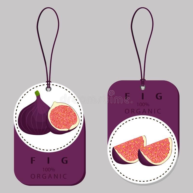 Logo för vektorsymbolsillustration för hel mogen fruktlilafikonträd stock illustrationer