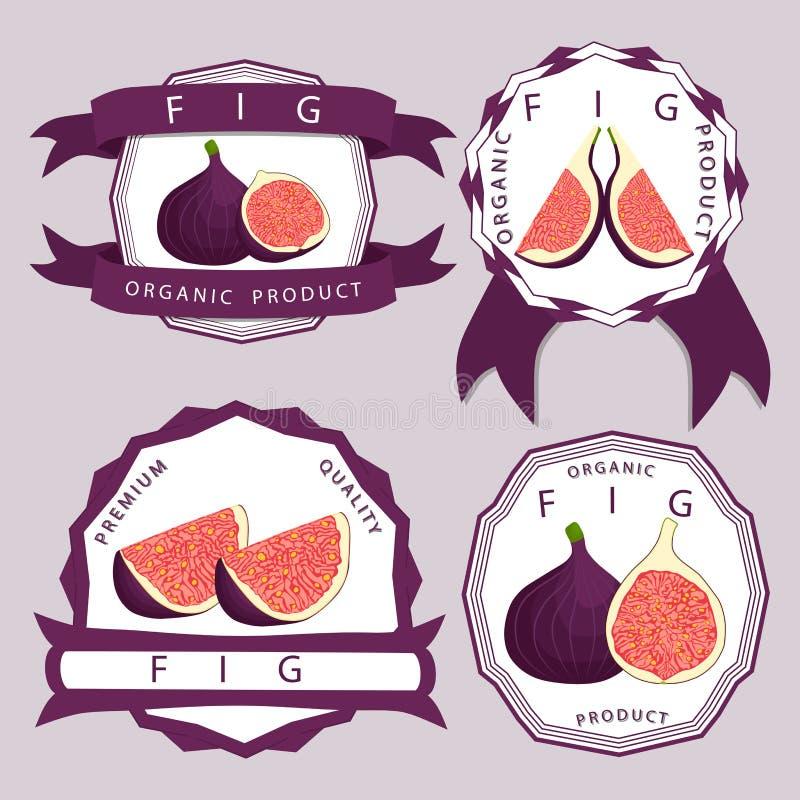 Logo för vektorsymbolsillustration för hel mogen fruktlilafikonträd royaltyfri illustrationer