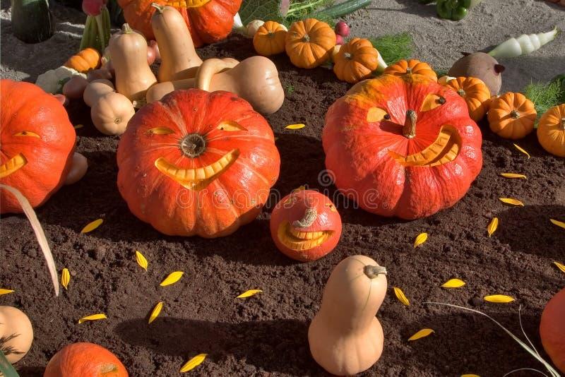 Logo feriado um Halloween fotografia de stock royalty free