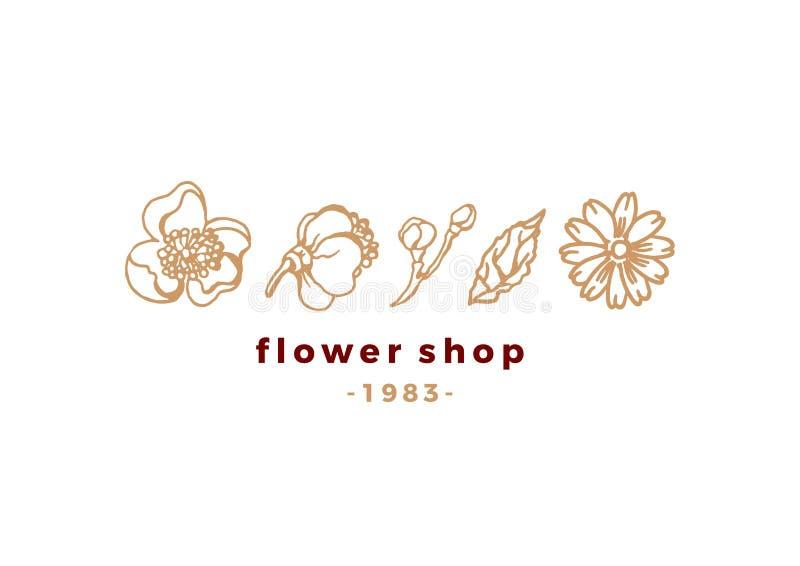 Logo floreale di bellezza di vettore per il negozio Emblema della natura illustrazione vettoriale
