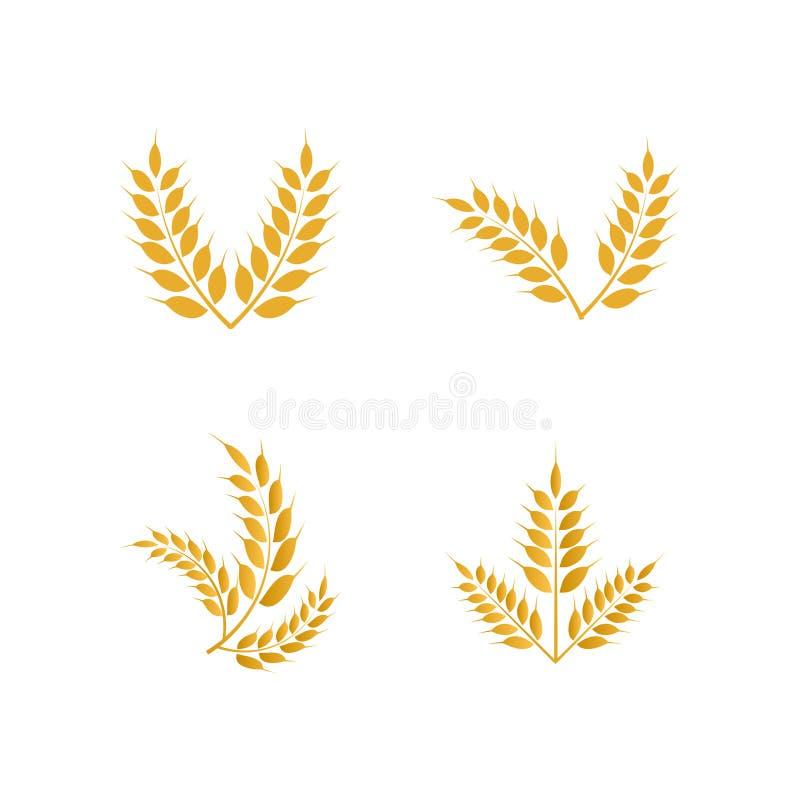 Logo-Ikonenschablone des Weizens gelbe lizenzfreie abbildung