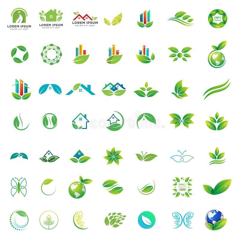 logo kolekcja zielony natury opieki zdrowotnej biznes ilustracji