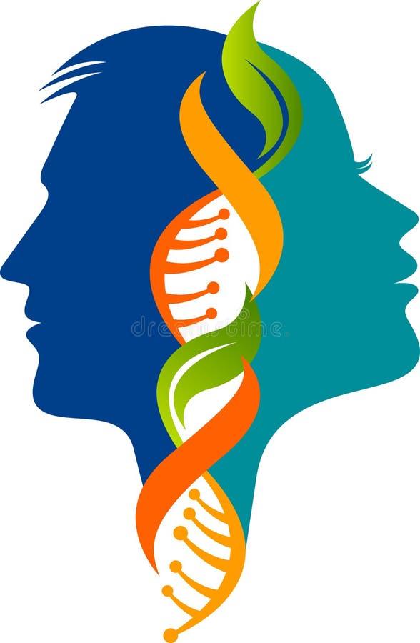 Logo masculin et femelle d'ADN illustration libre de droits