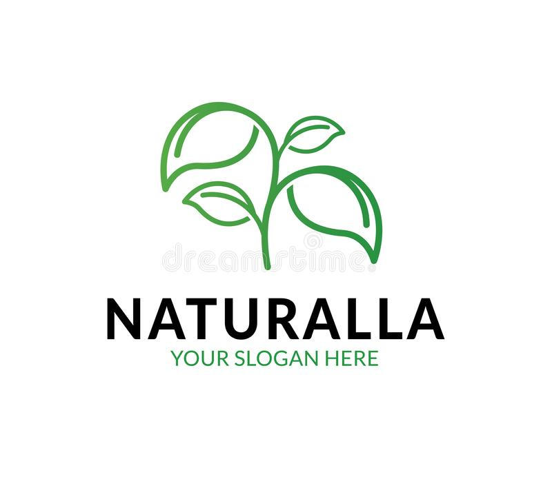Logo naturale della foglia illustrazione vettoriale