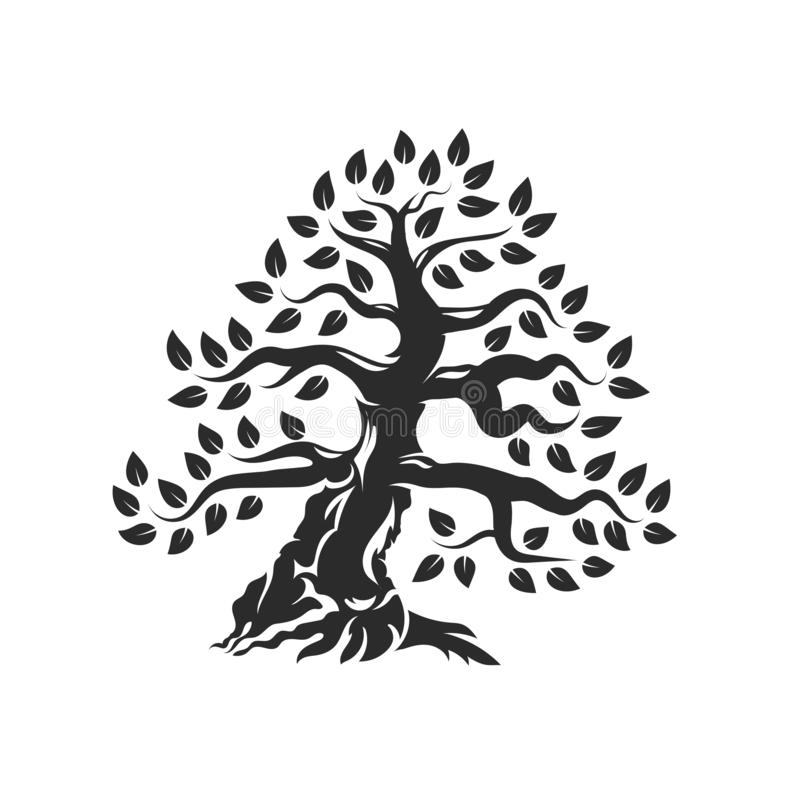 Logo naturel et sain organique de silhouette d'olivier d'isolement sur le fond blanc illustration libre de droits