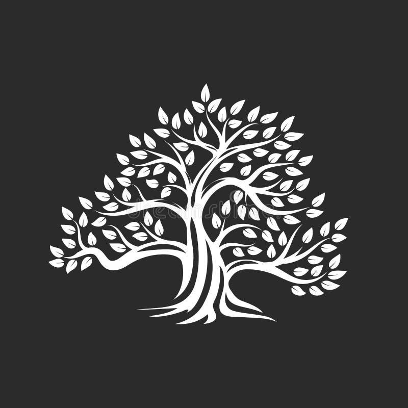 Logo naturel et sain organique de silhouette d'olivier d'isolement sur le fond foncé illustration libre de droits