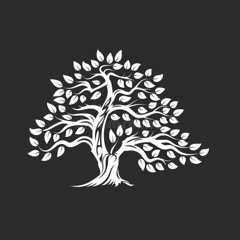 Logo naturel et sain organique de silhouette d'olivier d'isolement sur le fond foncé illustration de vecteur