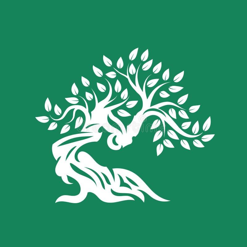 Logo naturel et sain organique de silhouette d'olivier d'isolement sur le fond vert illustration libre de droits