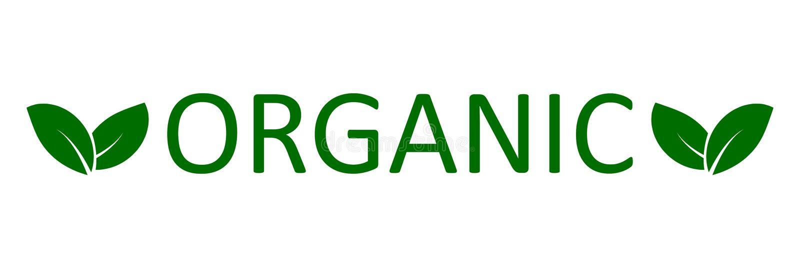 Logo organic with leaves stock illustration