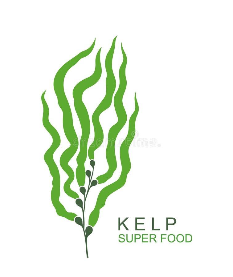 Logo subacqueo del fuco dell'alga Fuco subacqueo isolato dell'alga su fondo bianco illustrazione vettoriale
