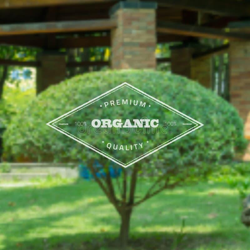 Logo Template Ecology Organic Food-Aufkleber auf Blured lizenzfreie abbildung