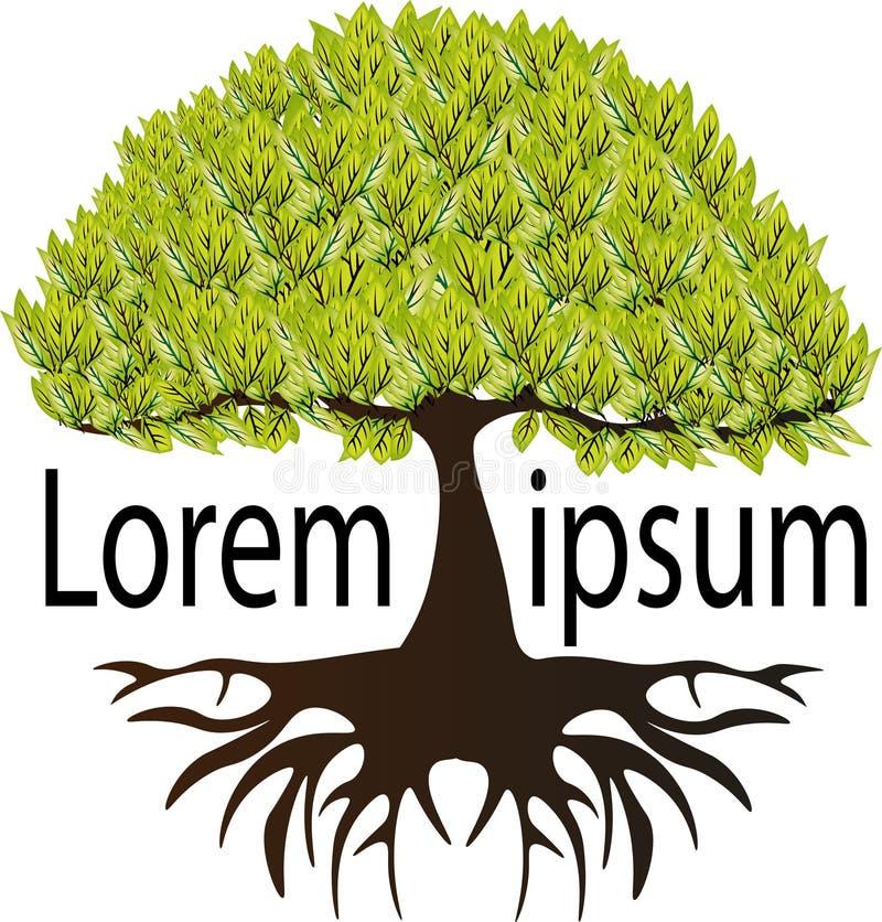 Logo von frischen Anlagen mit sehr schönen Wurzeln lizenzfreie abbildung