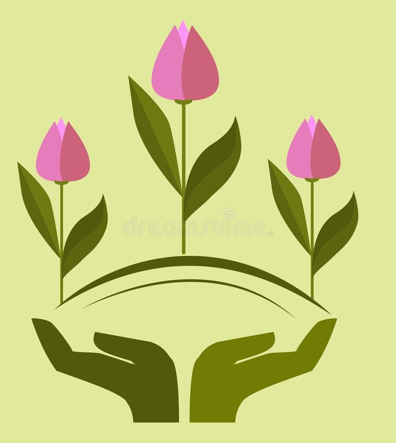 Logoen händer som rymmer tulpan, portionhanden, vår blommar stock illustrationer