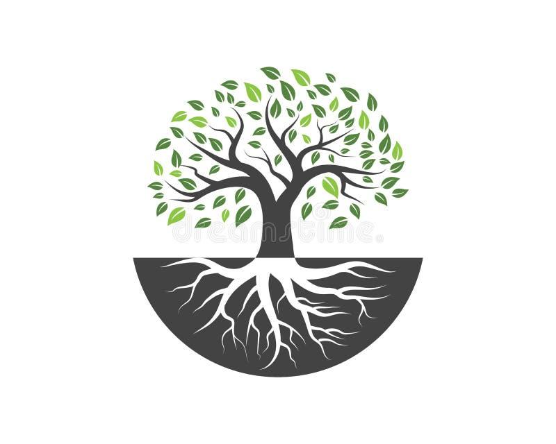 Logoer av det gröna trädbladet vektor illustrationer