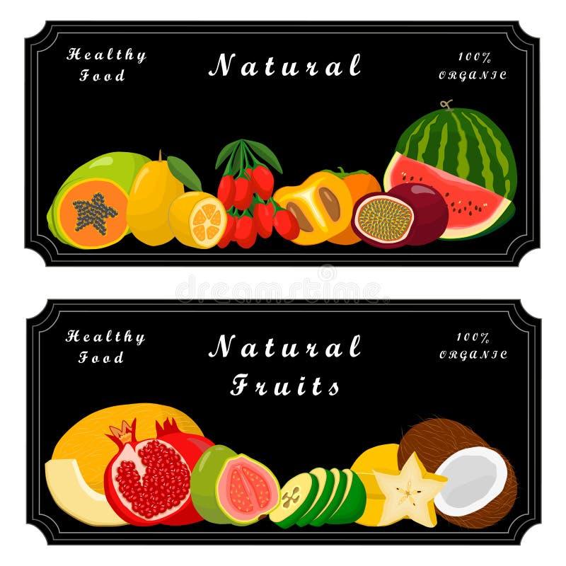 Logofrukt vektor illustrationer