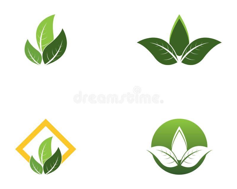 Logos of green leaf nature element.  vector illustration