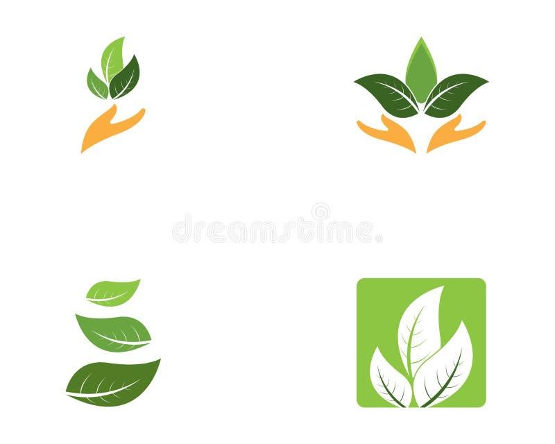 Logos of green leaf nature element.  stock illustration