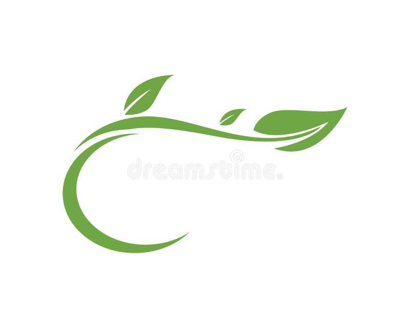 Logotipo da natureza da folha e vetor verdes do molde do símbolo ilustração royalty free