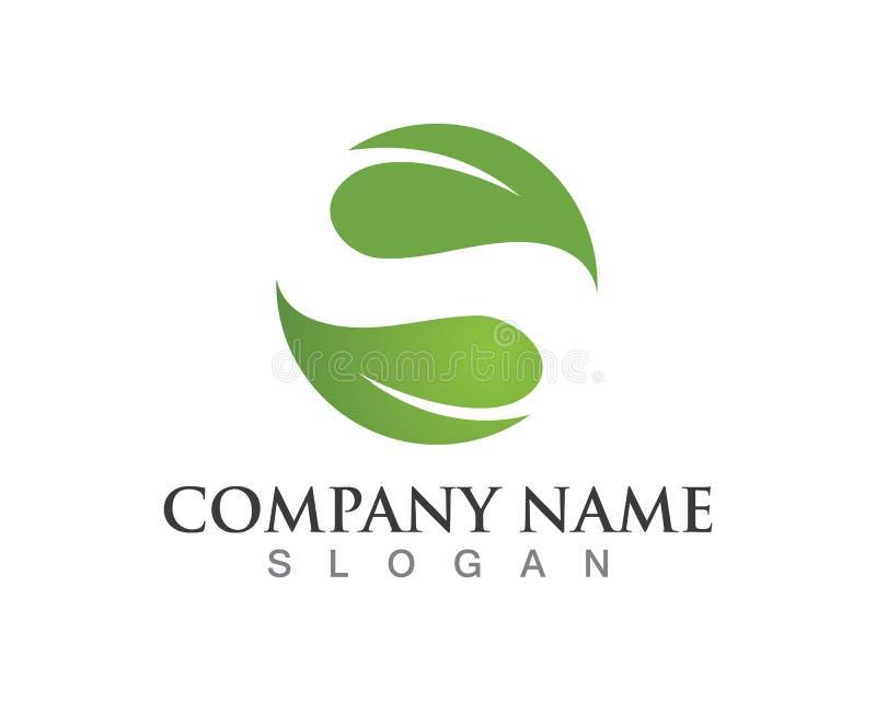 Logotipo da natureza da folha e vetor verdes do molde do símbolo ilustração stock