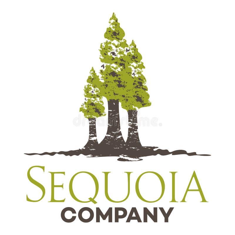 Logotipo da sequoia da árvore Ilustração do vetor ilustração do vetor