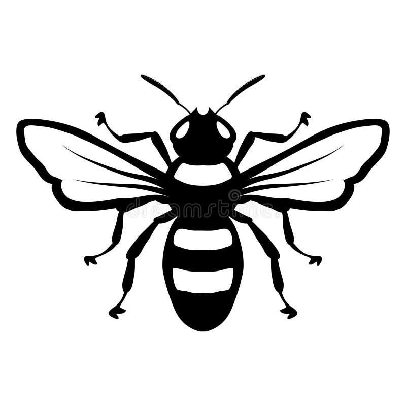 Logotipo de la abeja, abeja de la miel en el fondo blanco, bosquejo exhausto de la mano de abeja stock de ilustración