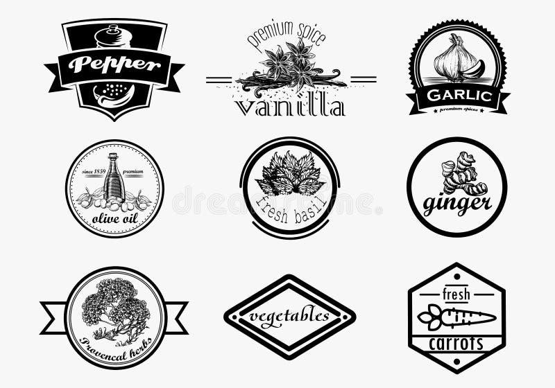 Logotipo de la especia fijado en estilo del vintage Mano del vector dibujada libre illustration