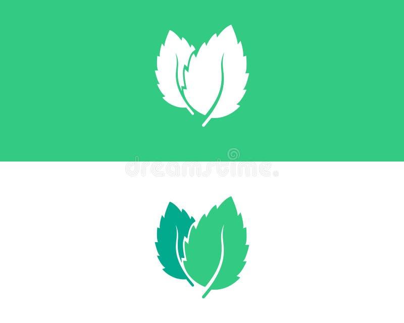 Logotipo de la hoja de la menta y vector del símbolo ilustración del vector