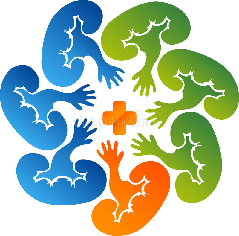 Logotipo del cuidado del riñón del círculo stock de ilustración