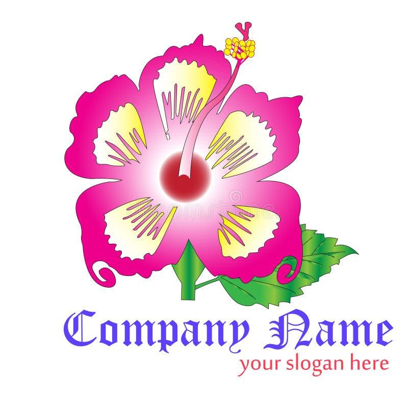 Logotipo do hibiscus fotografia de stock royalty free