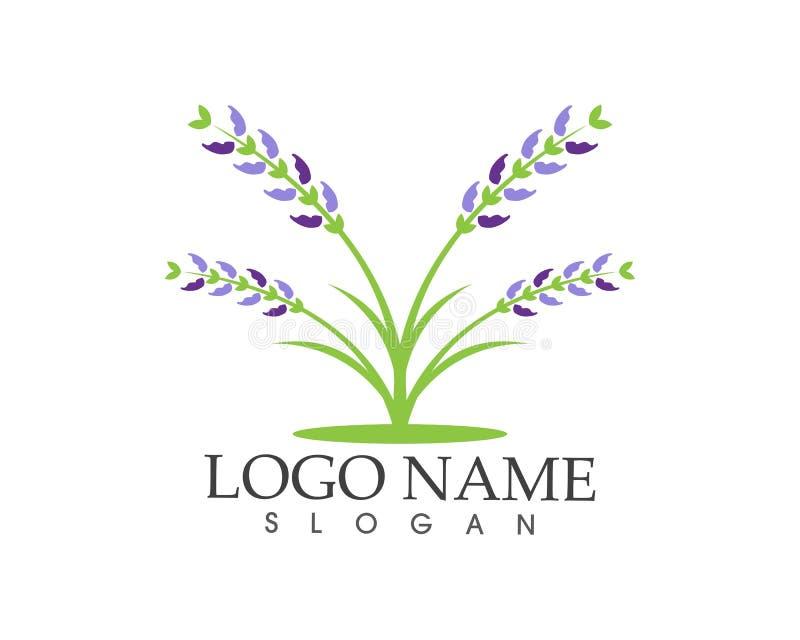 Logotipo do sinal do ícone da flor da alfazema ilustração royalty free