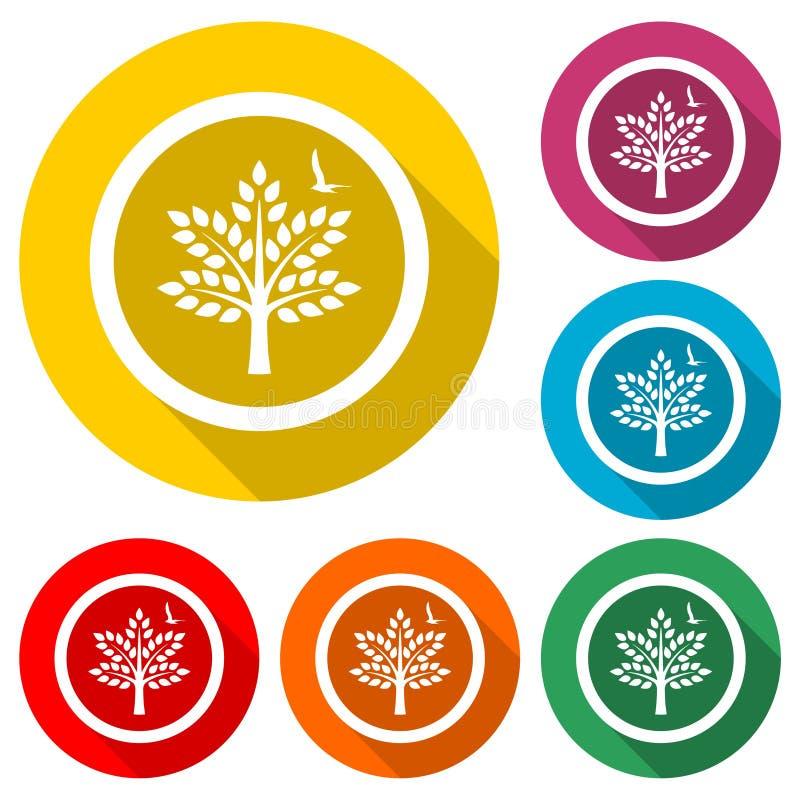 Logotipo dos ramos do pássaro e de árvore ou ícone, grupo de cor com sombra longa ilustração royalty free