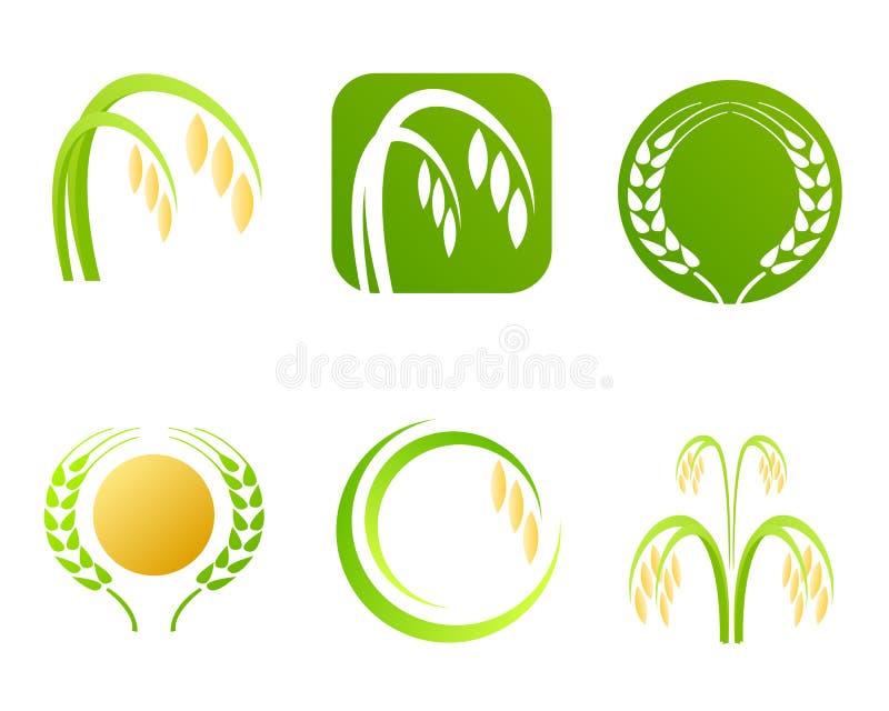 Logotipo e símbolos da indústria do arroz ilustração do vetor