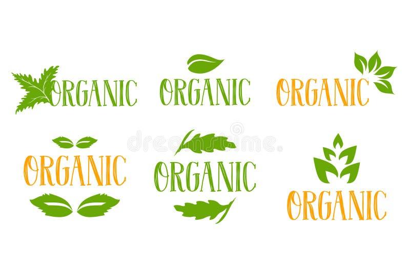 Logotipo orgánico del vector fijado en colores verdes y anaranjados con varios tipos de hojas herbarias verdes ilustración del vector
