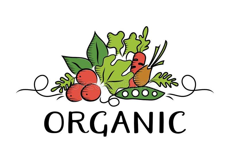 Logotipo vegetal e orgânico ilustração royalty free